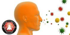 Todo lo que debes conocer sobre las alergias y cómo controlarlas