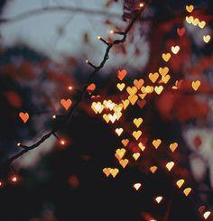 hearts. @Anna Perkins