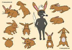 Follow the red rabbit - http://www.putois.net/