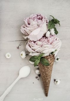 A Scoop of Roses styled by Vintagepiken - http://visi.co.za/files/gallery/2831/23695_original_558x800.jpg
