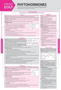 Study Chemistry, Study Biology, Chemistry Notes, Physical Chemistry, Chemistry Lessons, Biology Lessons, Biology Teacher, Science Chemistry, Brain Mapping