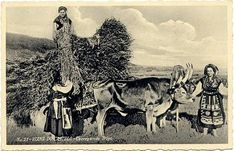 imagens scrapbook - OneDrive Moose Art, Poster, Scrapbook, Animals, Portugal, Suits, I Love, Animales, Animaux
