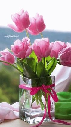 Sparkling Pink Tulips spring flowers sparkle vase tulips grow bulbs graphic