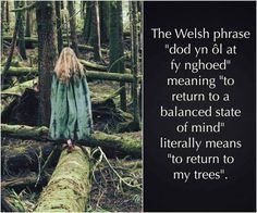 Welsh hills, see you soon! Welsh Phrases, Welsh Words, Magick, Witchcraft, Wicca, Learn Welsh, Affirmations, Welsh Language, Celtic Druids