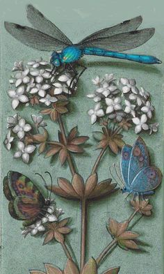 ♈ Dragonfly Versailles ♈ dragonflies in art, photography, jewelry, crafts, home & garden decor - Dragonfly Art