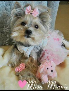 Misa Minnie - so pretty in pink!