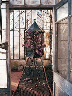 Not so abandoned conservatory