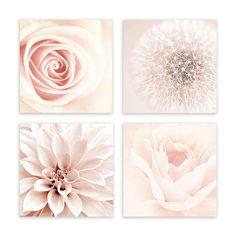 Blush Pink Wall Art, Shabby Chic Bathroom, Pink Wall Decor, Pink Bathroom Art, 4-Piece Wall Art by Galeria Rodrigo