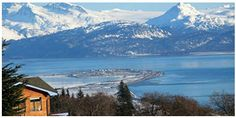 A Homer Alaska Weekend To Kill For! - Land's End Resort - Homer, Alaska North To Alaska, Visit Alaska, Katmai National Park, National Parks, Places To Travel, Places To See, Homer Alaska, Kenai Peninsula, Alaska Adventures