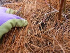 Pine Straw  In the South, pine straw is the mulch of choice because it's readily available and low-cost — maybe even free. Fresh pine straw has an attractive burnt-orange hue that enhances any landscape, from formal front yard gardens to backyard vegetable areas. There's no science to back this up, but common…