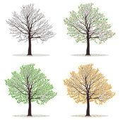 Illustration of Four seasons - spring, summer, autumn, winter. Art tree beautiful for your design. Vector illustration vector art, clipart and stock vectors. Tree Illustration, Digital Illustration, Four Seasons Art, Winter Art, Tree Art, Stock Pictures, Art Google, Spring, Vector Art