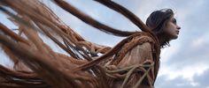 182 - Wind.  I offer individual classes on image processing and accept orders for creation of photos of almost any genre. Please feel free to contact me in case of any questions: www.facebook.com/efim.shevchenko.  Провожу индивидуальные занятия по фотографии и обработке изображений, принимаю заказы на создание фотографий практически любых жанров. За более подробной информацией обращайтесь ко мне посредством личных сообщений: vk.com/efimshev.