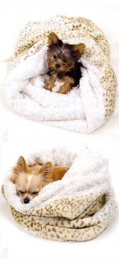For Tai...who loves a snuggley blanket