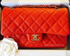 Everything About The Chanel Easy Carry Bag