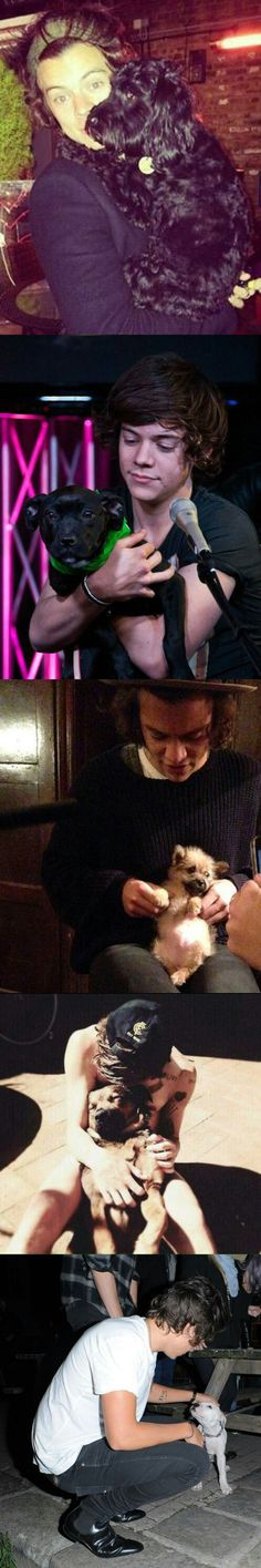 I honestly don't like dogs that much but harry with dogs, kills me