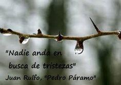"""Bella y esclarecedora esta frase del libro """"Pedro Páramo"""", de Juan Rulfo. Se suele juzgar a los demás como melancólicos, tristes, grises, con la liviandad de la falta de empatía. Es cierto que las ..."""