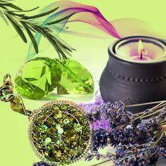 Green Amber Fragrance Oil