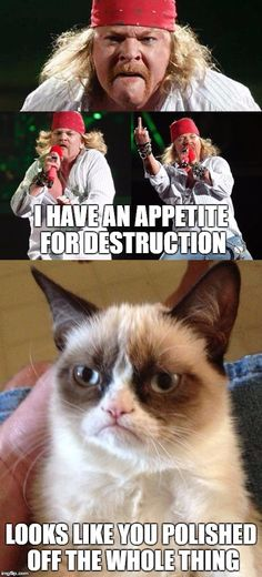 The Whole Thing | I HAVE AN APPETITE FOR DESTRUCTION LOOKS LIKE YOU POLISHED OFF THE WHOLE THING | image tagged in memes | made w/ Imgflip meme maker