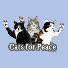 cats for peace!#Repin By:Pinterest++ for iPad#