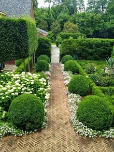 Landscape gardener ~ Dreamy Nature