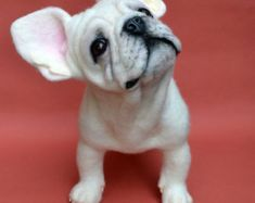 SOLD. Needle Felted White French Bulldog Sculpture OOAK Dog Artist Ozbears Teddy Bear