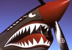 WWII shark camo