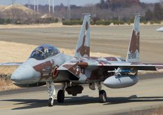F-15 Aggressor JASDF