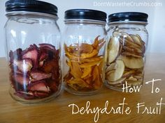 Instructions for dehydrating your summer produce - bananas, grapes, blueberries, peaches, mangos, apples, persimmons, carrots, strawberries and pineapple!! :: DontWastetheCrumbs.com