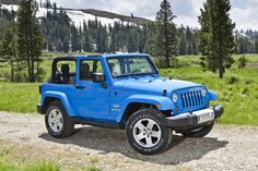 jeep wrangler - Looks right at home!