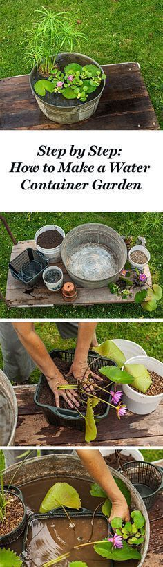 Create this simple pond-in-a-pot with our step by step instructions: http://www.midwestliving.com/garden/container/how-to-plant-a-water-container-garden/
