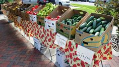 Historic Downtown Kissimmee Farmers Market - review, photo gallery