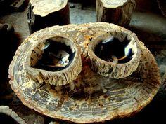 Petrified Wood Bowls