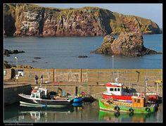 Colorful fishing boats at St. Abbs - Scotland