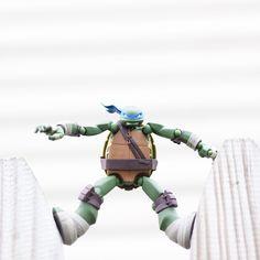 Balance.  Pose by: Jett Longnecker   #TMNT #teenagemutantninjaturtles #toys #ninjaturtles #ninjaturtleposes #revoltech #leo #leonardo