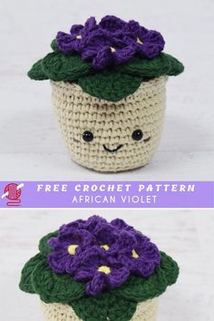 African Crochet Violet FREE African Crochet Violet This beautiful crochet decorativeshows ornament flower with the name African Violet. Make it along with a flower for each month of the year like this is for February! The source pattern. Cactus En Crochet, Beau Crochet, Crochet Mignon, Cute Crochet, Beautiful Crochet, Crochet Flowers, Crochet Cactus Free Pattern, Crochet African Flowers, Beautiful Flowers