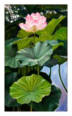 Lotus Rising 72-2004 - Paintings by John Lautermilch