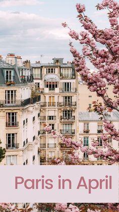 Paris France Travel, Paris Travel Guide, Travel Guides, Cool Places To Visit, Places To Go, Paris In April, Paris Things To Do, Beautiful Paris, Disneyland Paris