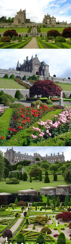 Scotland Drummond Castle Gardens, Scotland.