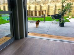 Level, non-slip and well lit access to the garden makes life safer and easier for Denise. New Zealand Houses, Pathways, Car Parking, Dining Area, Living Spaces, House Design, Patio, Play, Chair