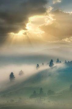 Sun Breaking Through Morning Mist