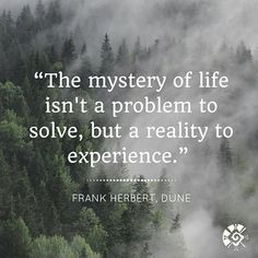 #quote #igquotes #motivation #mystery #reality #experience #happytuesday