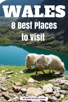 Find out about the best 8 places to visit in Wales, Great Britain, Europe I Where to go in Wales I Best places to see in Wales I Most beautiful places in Wales I Things to do in Wales I Top places to visit in Wales #wales