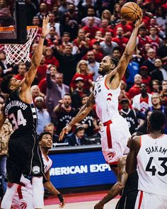 Toronto Raptors (@Raptors) | Twitter Basketball Leagues, Basketball Legends, Basketball Players, Toronto Raptors, Small Forward, Shooting Guard, Nba Wallpapers, Basketball Pictures, Nba Champions