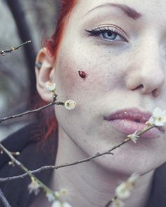 Ladybug by Maja Topčagić on 500px