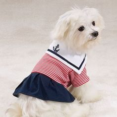 Casual Canine Paw Harbor Dress XL ** Visit the image link more details. Cutest Dog Ever, Sailor Dress, Maltese Dogs, Cute Cats And Dogs, Dog Costumes, Dog Dresses, Dogs Of The World, Dog Bed, Puppy Love