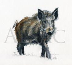 "artwork  ""Sanglier""-Alsac-wildlife-art Chinese Fairy Tales, Pig Art, Wild Boar, Wildlife Art, Animal Drawings, Drawing Sketches, Moose Art, Watercolor, Fox Tattoo"