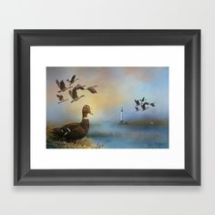 20% Off + Free Shipping - Ends Tonight at Midnight PT! #duck, #geese, #lighthouse-Choose from a variety of frame styles, colors and sizes to complement your favorite Society6 gallery, or fine art print - made ready to hang. Fine-crafted from solid woods, premium shatterproof acrylic protects the face of the art print, while an acid free dust cover on the back provides a custom finish. All framed art prints include wall hanging hardware.