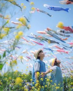 "いいね!140件、コメント10件 ― tomoco*さん(@pimoco_55)のInstagramアカウント: 「❁ feel spring. . A lot of ""colorful carp banners""  are swimming in the sky. . Location :…」"