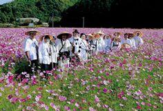 四季のフォトコンテスト2007・秋