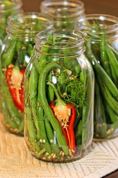 Chili Dilly Beans - These pickled dill green beans are tangy, crunchy and full of spicy goodness. Chili peppers, dill a - Spicy Pickled Beans, Spicy Green Beans, Pickled Green Beans, Can Green Beans, Pickled Hot Peppers, Chutney, Dilly Beans, Green Bean Recipes, Cooking Ingredients